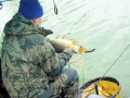 2019 Vezetőségi horgászverseny a Rózsaligeti tónál. Foto: Csiba Zella György.